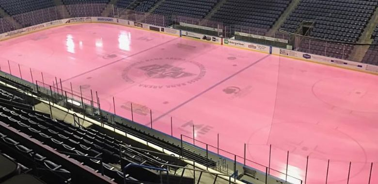 Reign Host Gulls on Pink in the Rink Tonight