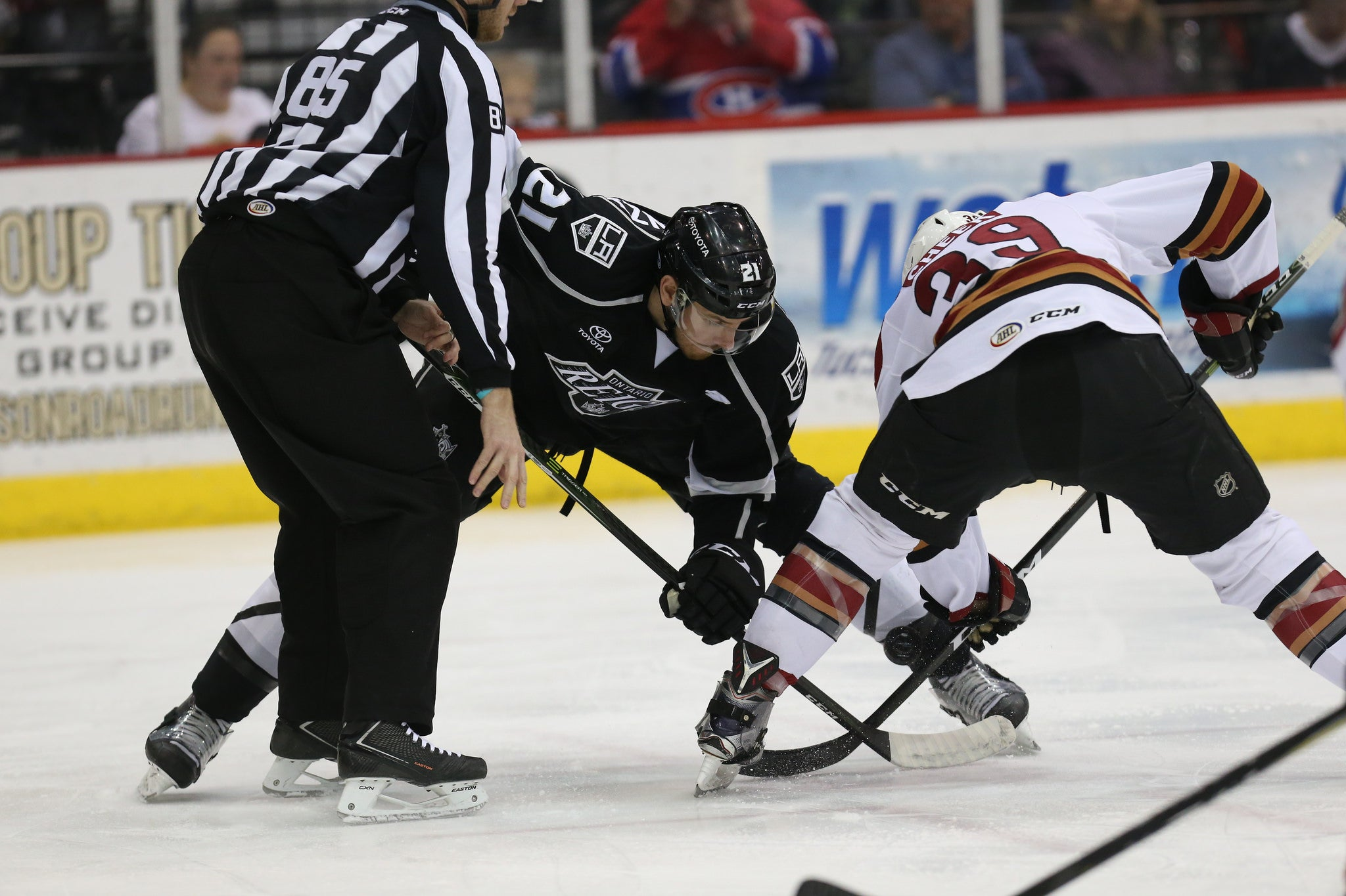 Reign and Roadrunners Collide Tonight